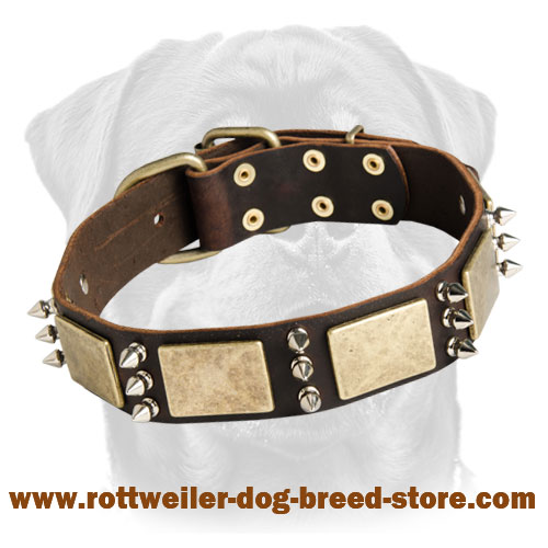 War Leather Collar - Rottweiler Collar Decorated with Plates & Spikes