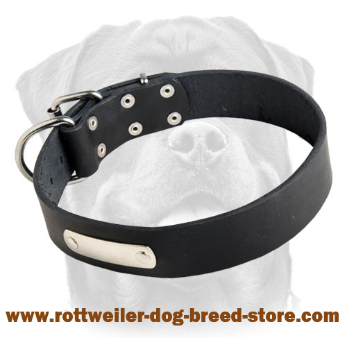 Custom Leather Dog Collar for Rottweiler with free ID tag