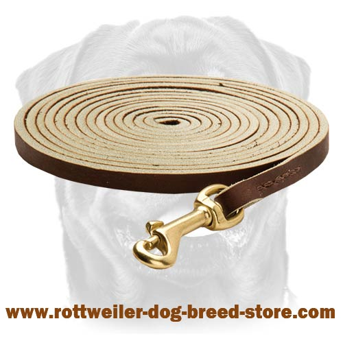 Best Tracking Dog Leash with Brass Snap Hook for Rottweilers