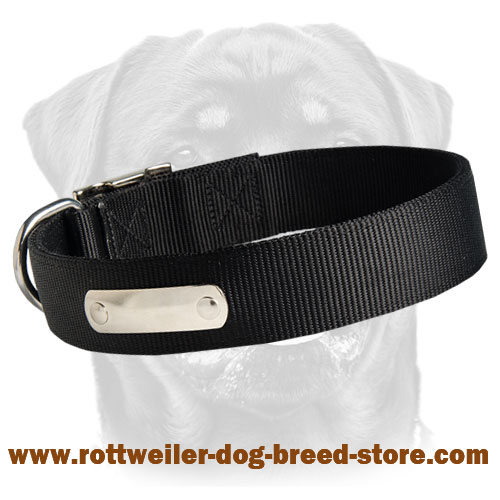 Get 2 Ply Nylon Dog Collar w/h name tag/Metal Buckle