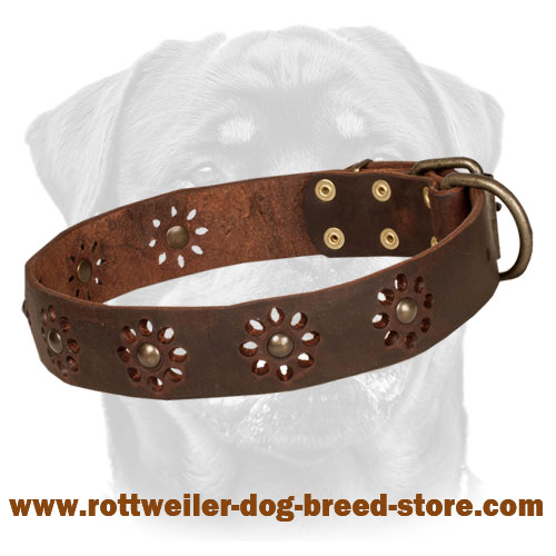 'Spring mood' Leather Dog Collar for Walking in Style