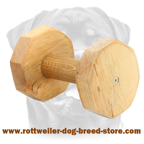 High Quality Dog Dumbbell for Rottweiler - 1000g