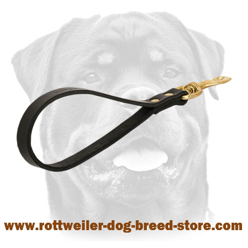 Short leather dog leash with handle - Click Image to Close