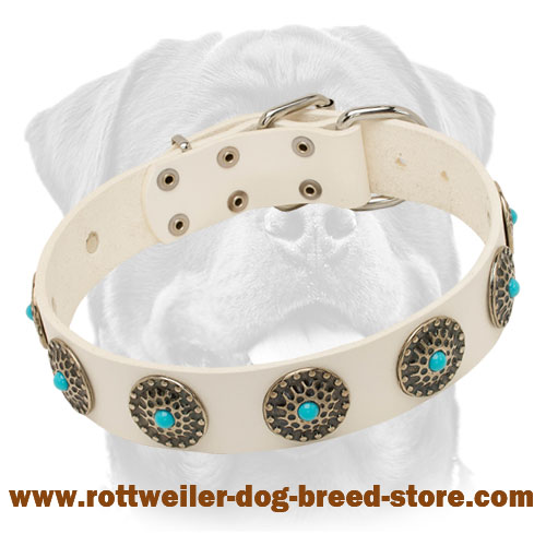 Designer White Leather Dog Collar with Silverish Circles