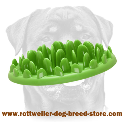 Interactive Pet Feeder Looking Like Grassy Lawn - Appetizer for Rottweiler's Healthier Meal Consumption
