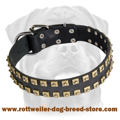 "New Leather Rottweiler Collar with 2 Rows of Brass Studs - ""Caterpillar"""