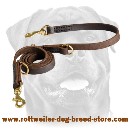 Strong Leather Police Agitation Lead 5,7 FT Long for Rottweiler