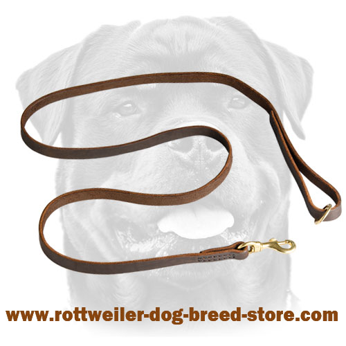 Leather Dog Leash Stitched with Wax Coated Threads
