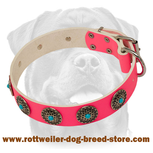 Fashionable Pink Leather Dog Collar with Circles and Blue Stones