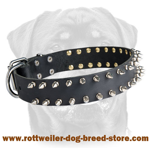 Leather Spiked Dog Collar for Rottweiler