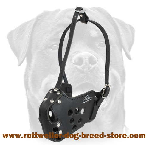 Military Dog Muzzle for Rottweiler Training, Police, Agitation