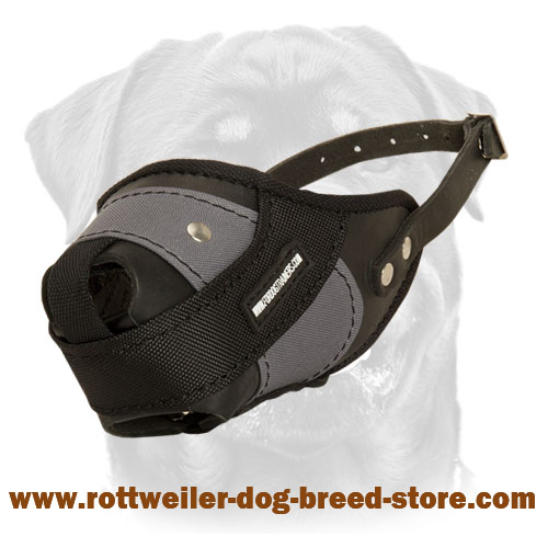 Perfected Attack Training Dog Muzzle