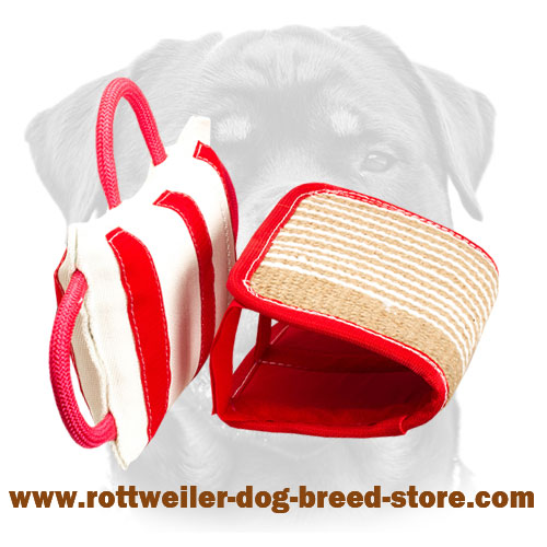 Training Rottweiler Pillow with 3 Handles and Jute Cover