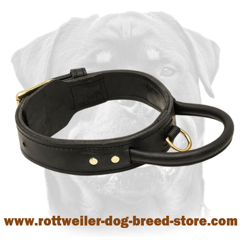 2 Ply Leather Agitation Dog Collar with Super Strong Handle