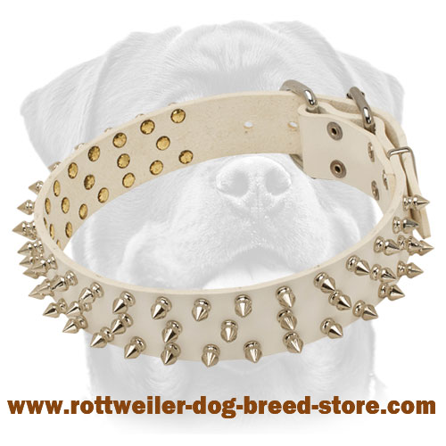 Super Fashionable Spiked White Leather Dog Collar for Walking