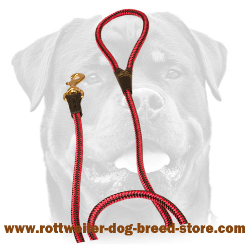 Cord nylon dog leash for Rottweiler
