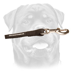 Nylon Rottweiler lead with three brass snap hooks