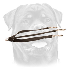 Nylon Rottweiler leash for walking three canines