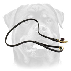 Walking Leather     Rottweiler Leash