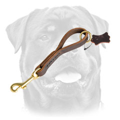 Training Leather Dog Leash For     Rottweiler