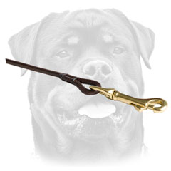 Round Leather Dog Leash With     Brass Hardware For Rottweiler
