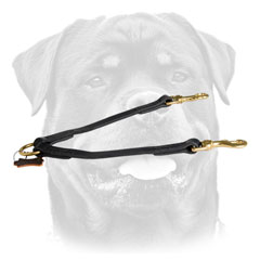 Stitched Leather Dog Leash For     Rottweiler