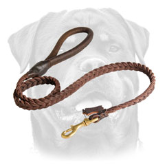 Stitched Leather Dog Leash For 