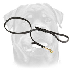 Braided Leather Rottweiler Leash