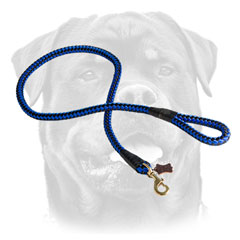 Nylon Dog Leash With Brass Snap Hook For Rottweiler