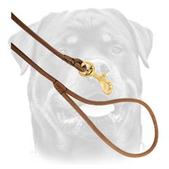 Rottweiler Round Leather Dog Lead
