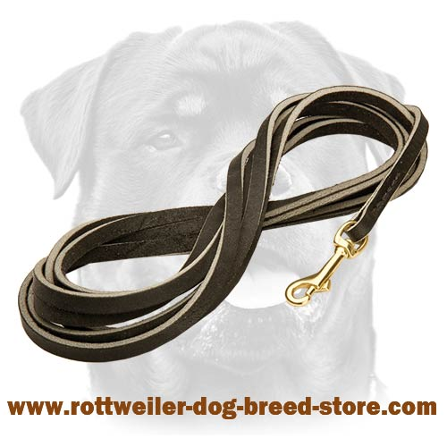 Most durable leather leash