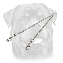 Chain coupler Rottweiler leash for 2 dogs handling