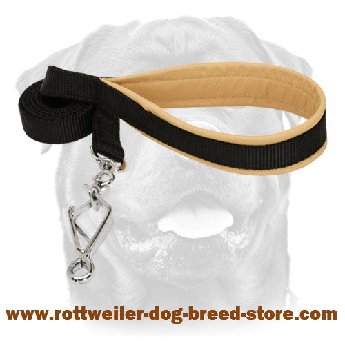 Rottweiler nylon leash with comfy handle
