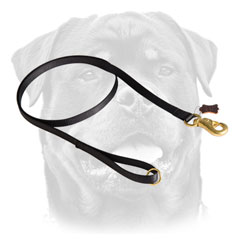 Waterproof leash for Rottweiler 