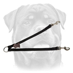 Rottweiler coupler with rust resistant nickel-plated O-ring