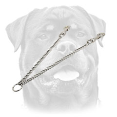 Chain leash for walking with 2 Rottweilers