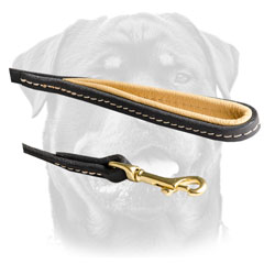 Rustless Snap Hook On Leather     Rottweiler Leash