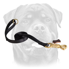 Brass Snap Hook On Nylon Dog Leash For Rottweiler