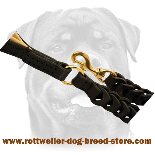 Extremely durable leather dog leash with solid snap