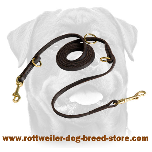 Leather adjustable dog leash with brass-made snap hooks and solid O-rings