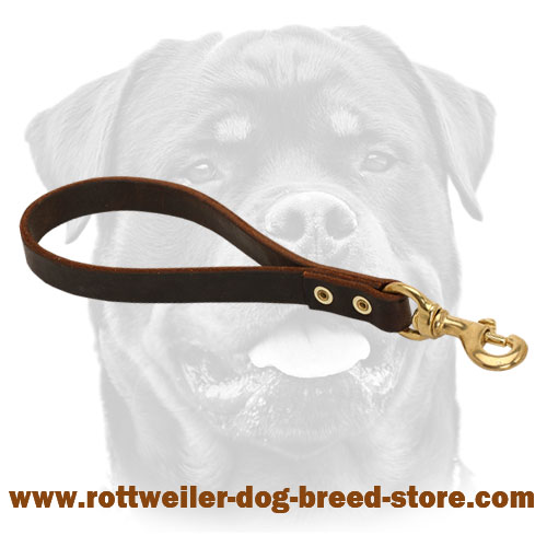 Short brown leather dog lead stitched for durability
