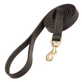 Leather Leashes Rottweiler