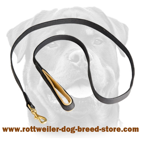 Leather Dog Leash for Training, Walking Rottweiler