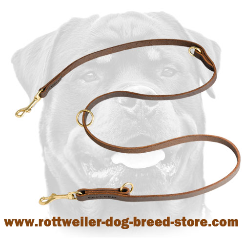 Field Leather Dog Leash for Rottweiler