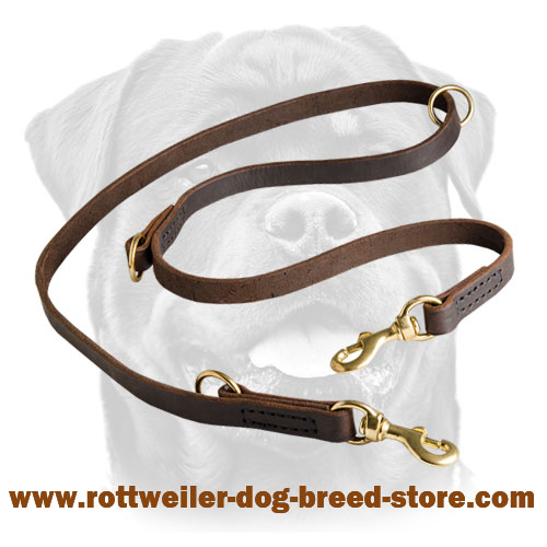 Unique Leather Dog Leash for Rottweiler