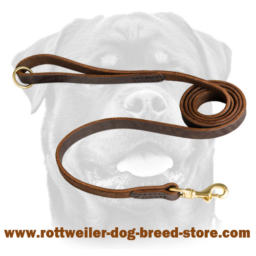 Leather Rottweiler Leash with Smooth Surface