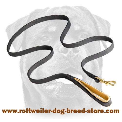 Rottweiler Leash Leather with Padded Handle