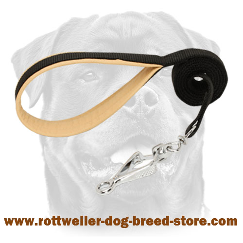 Nylon dog Rottweiler leash with smooth padded handle