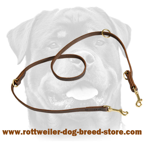 Multipurpose Rottweiler Leash Leather Stitched for Added Strength
