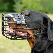 Best Winter Metal Basket Rottweiler Muzzle